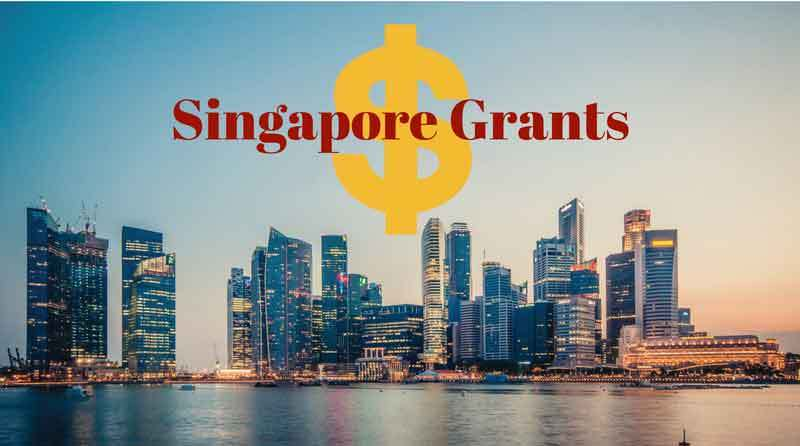 Grants by the Inland Revenue Authority
